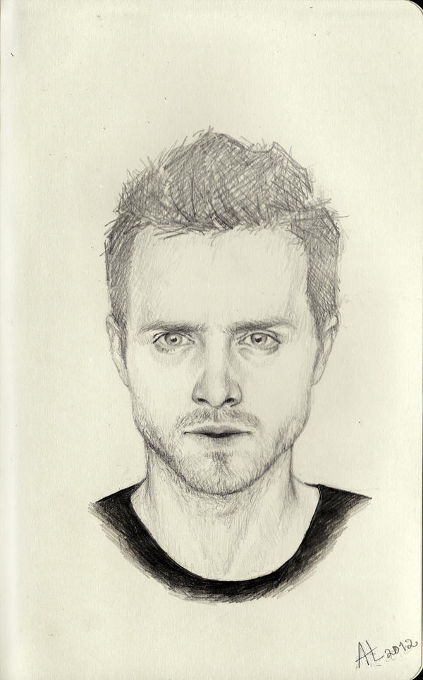 Jesse Pinkman by ddreamcatcher
