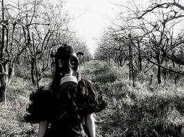 gas mask 3 by AlexiaBleedel
