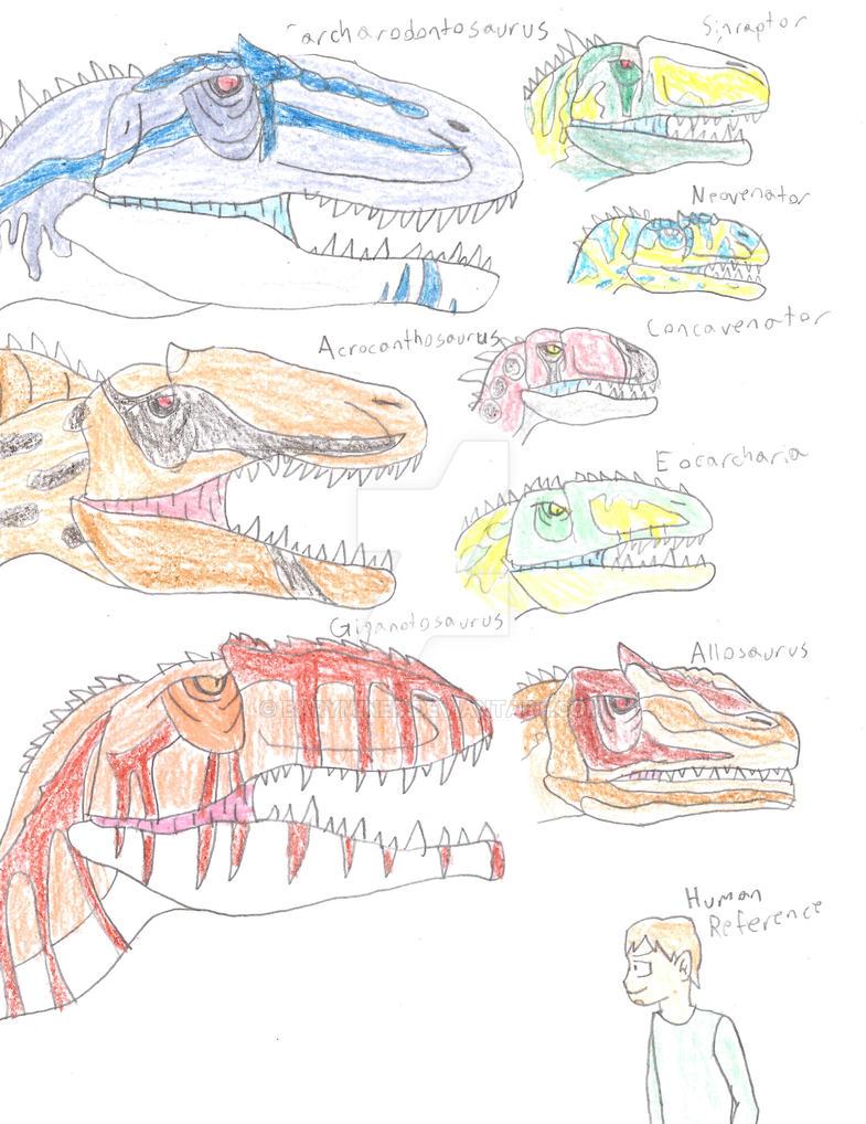 Allosauroidea Size Comparison by BaryMiner