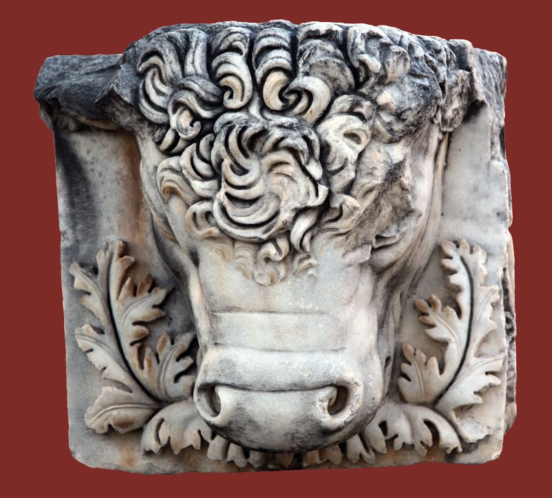 Minotaur Head by thylacin on DeviantArt