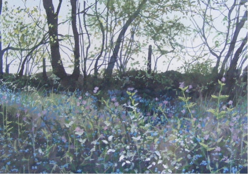 Bluebells at Greatham Woods by Krystalvoyager