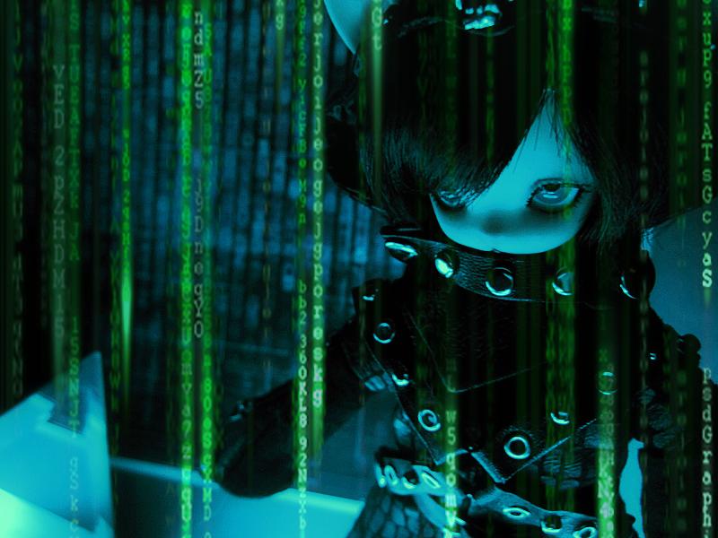 Enter the Matrix by Basilah-Amir