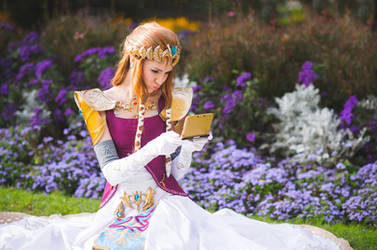 Princess Zelda vs Nintendo 3DS by neko-tin
