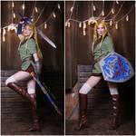 Zelda cross dressing