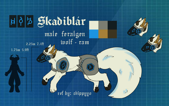 Skaiblr Reference ~ by Chippyyo