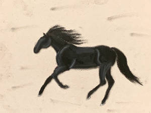 Cantering Black Horse