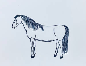 Black Marker Horse Drawing 149