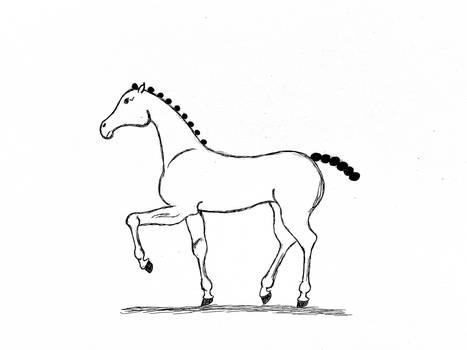 An Elegant Horse