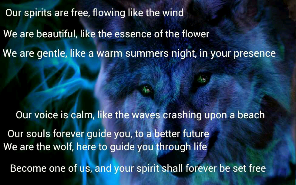 Lone Wolf Poems Wolf Poems