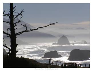 November Coast by EddiePerkins