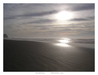 Beautiful Grey by EddiePerkins