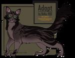Cat Adopt - closed