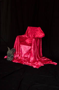 Red Satin Throne