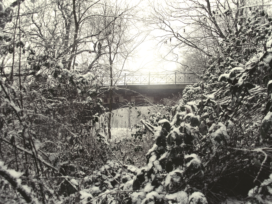 Bridge over frozen water by pkoc