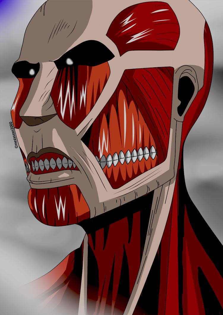 Attack on Titan - Colossol Titan by megasean3000