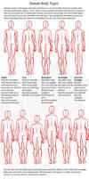 Female body shapes by ravendark82