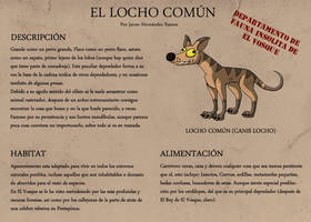 Locho Comun by Pandaman85