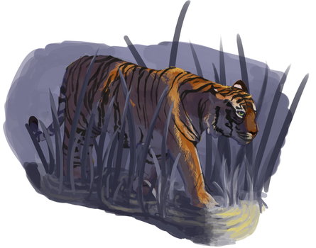Quick Tiger Painting