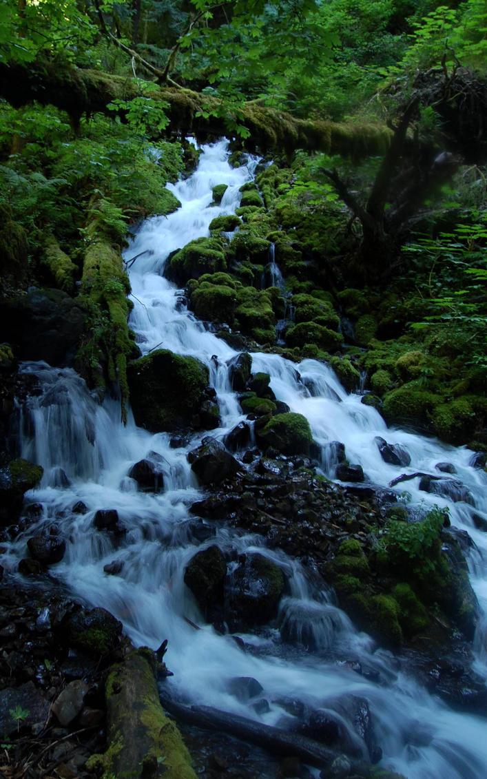 Wahkeena Springs, Oregon