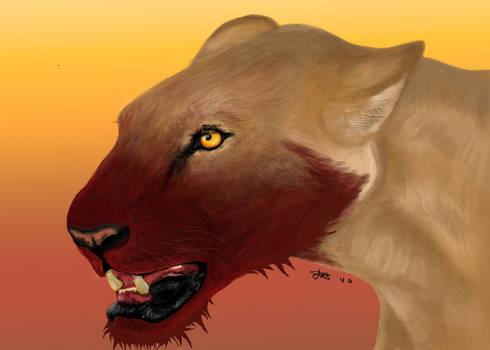 Lioness Final