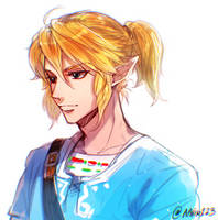 Zelda - Breath of the Wild by aphin123