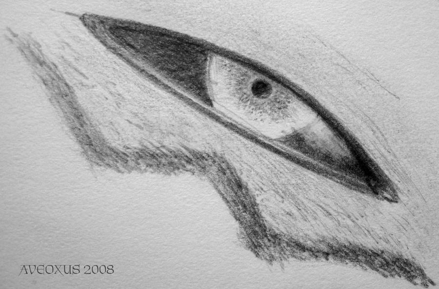 Renamon Eye closeup by Aveoxus