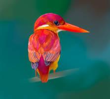 Birdie #3