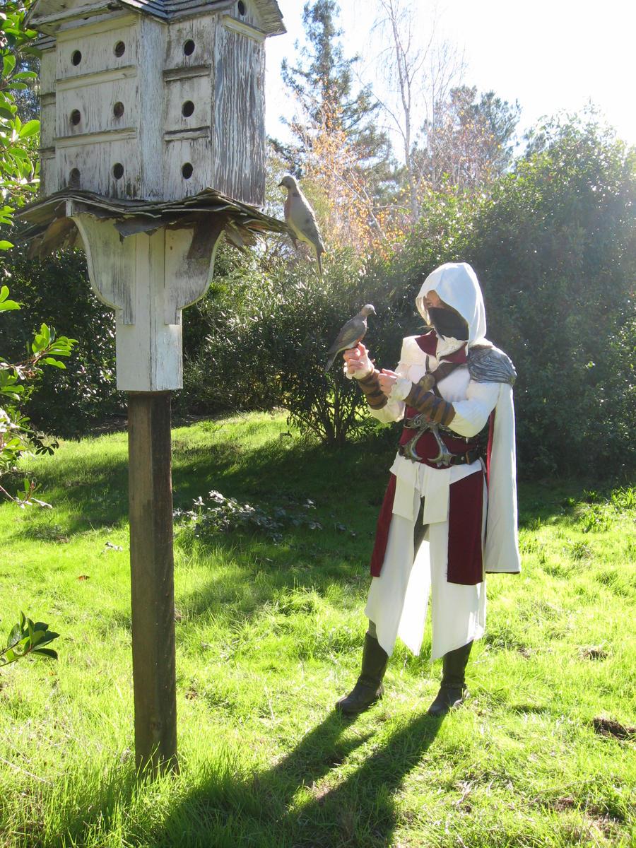 Assassin's Creed Brotherhooood by SavedChicken