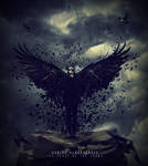 The Curse Of The Crows