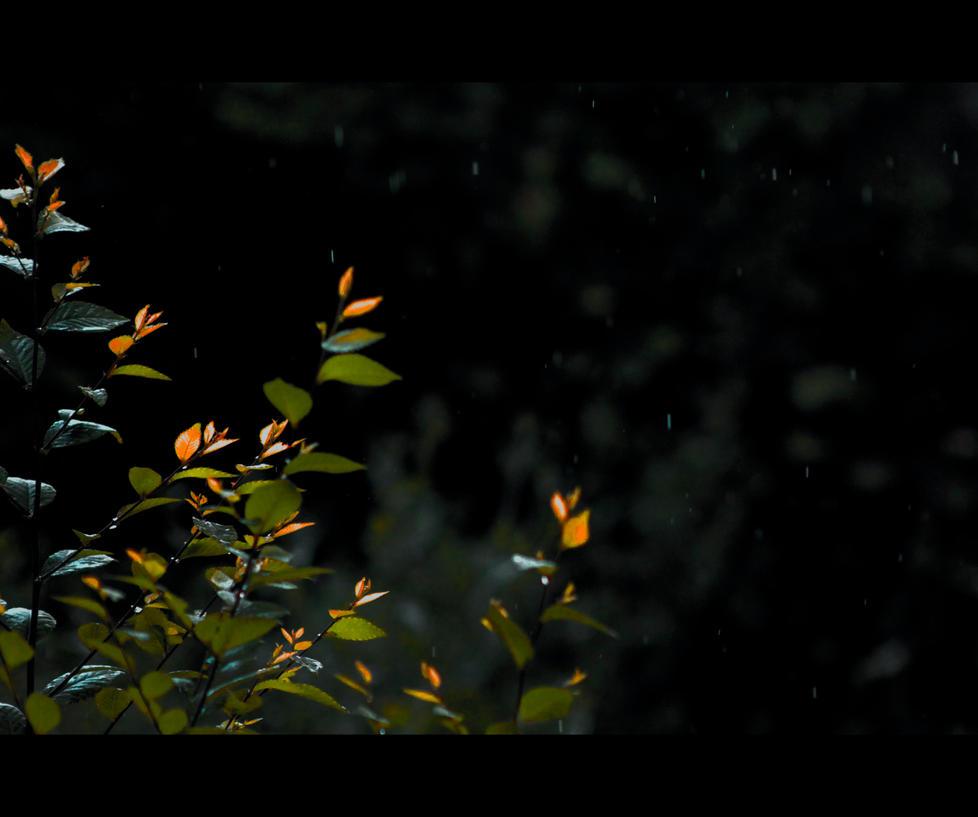 Sumrak i Vodnog by ron-brouillette