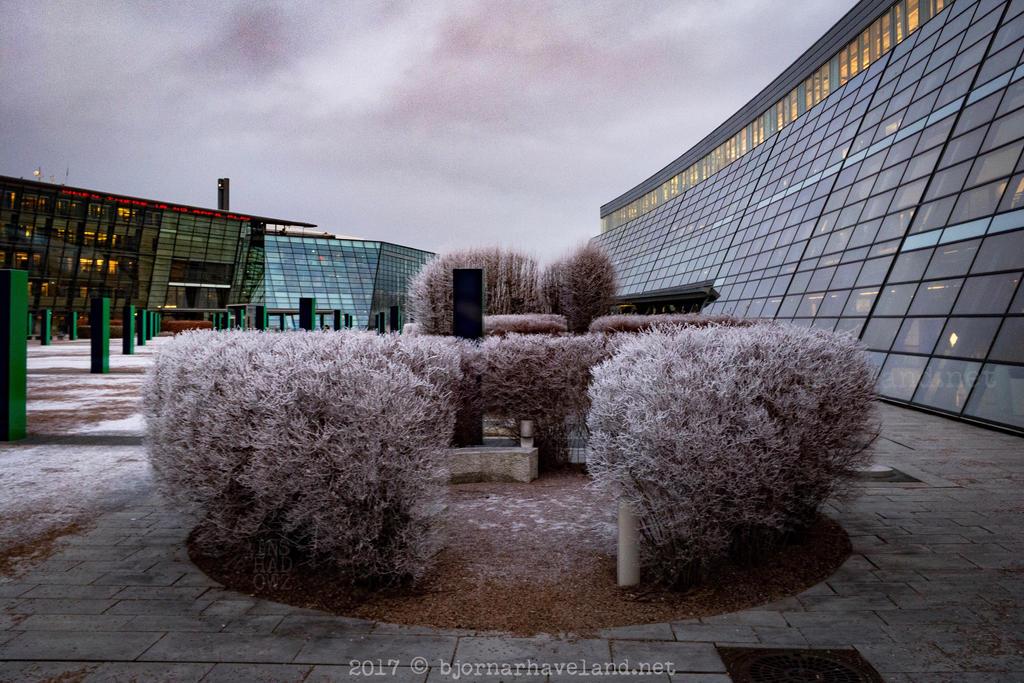 Slightly Frozen by inshadowz