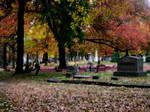 Autumn Blanket _2