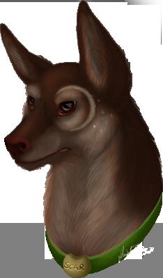 Scar Portrait by Bimmerd