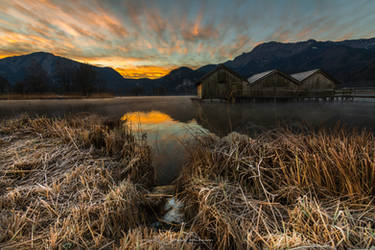Morning dew at Kochelsee by juergenrockmann