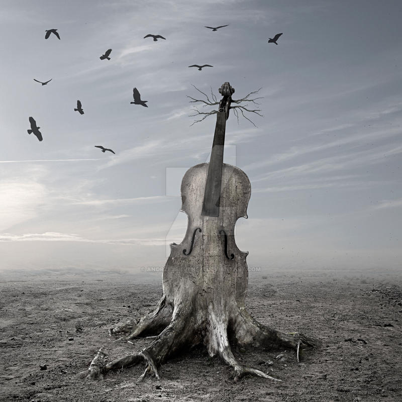 Violin by andrzejsiejenski