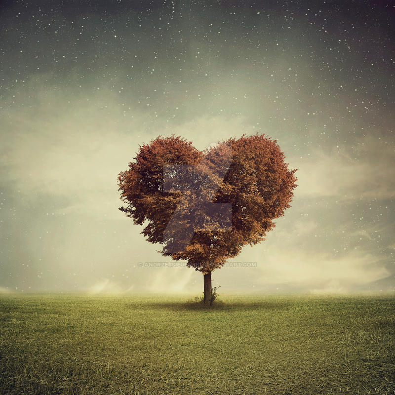 Heart Tree by andrzejsiejenski