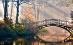 [Stock] sad and river bridge