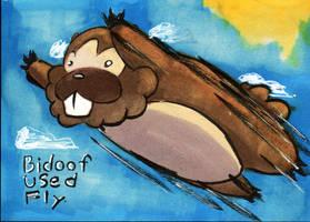 Bidoof used fly by ZenandGroove