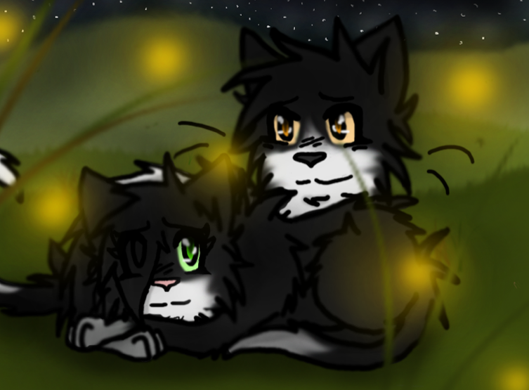 Nightfall Warrior Cats