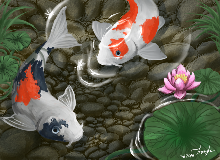 Koi fish pond by shinju tsukuda on deviantart for Koi fish pond drawing