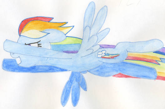 Rainbow Dash Fly !