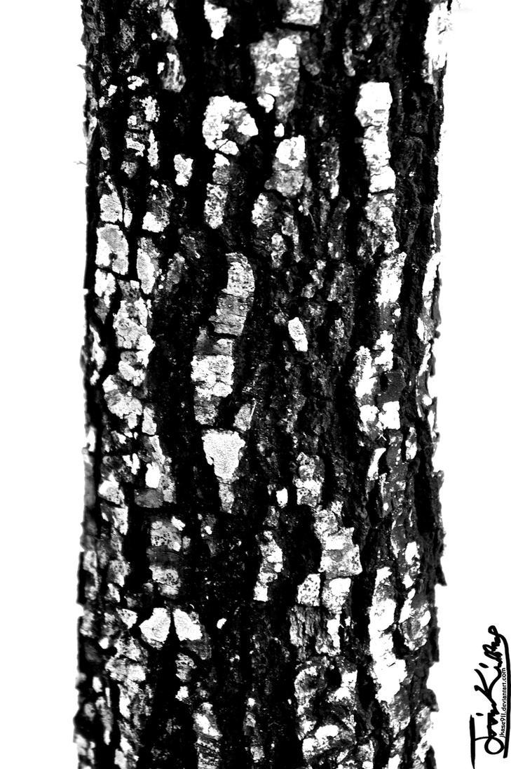 Charcoal Wood by JKase911