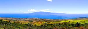 Island City Panoramic