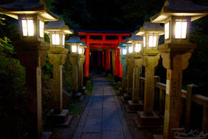 Inari Shrine at Night