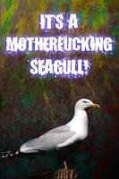 Seagull by Sheepykipz