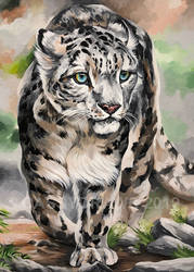 Amelia the Snow Leopard. (Acrylic)