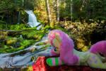 Fluttershy at Big Spring Creek Falls