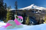 Flutterbat with Mount Hood in Winter