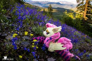 Flutterbat Among Alpine Larkspur Wildflowers