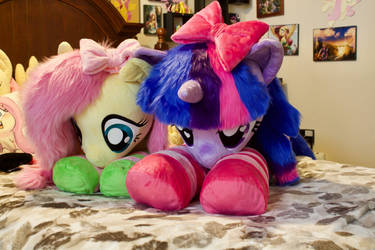 Fluttershy and New Twilight